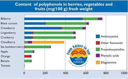 Polyphenol content in berries